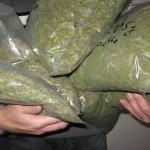 Грузовой автомобиль с фруктовым соком вез девять тонн марихуаны