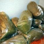 Торговцы наркотиками не отличаются умом: В своих телефонах они сохранили фотографии с травой и пачкой денег!