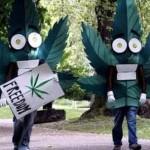 С 1991 года аресты за марихуану увеличились в три раза