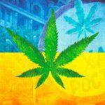 Проблемы легализации марихуаны в Украине